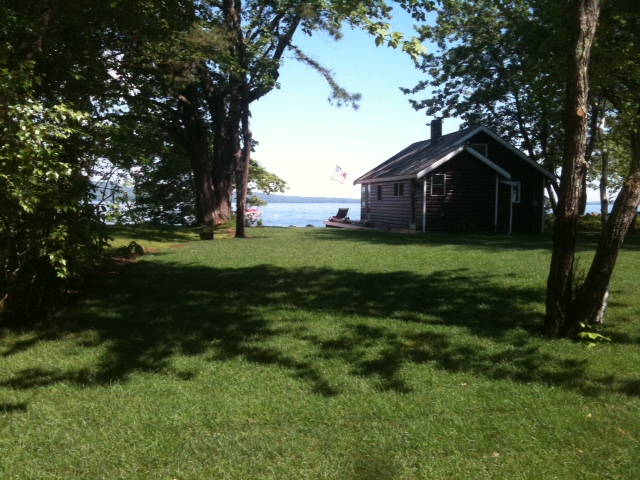 Finished product of a recently sodded lawn on Sebago Lake